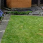 grass 150